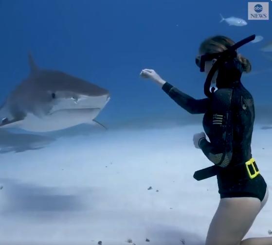 القرش يدخل على الغواص