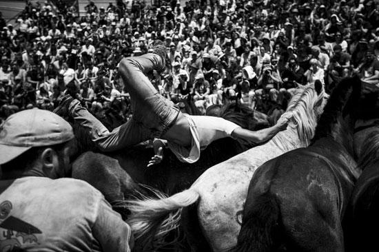 الوحش الأسود للمصور البرتغالى دييجو بابتيستا