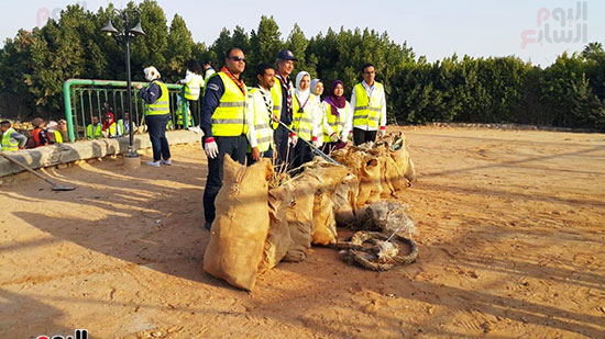 شباب بتحب مصر ينظفون شاطئ بحيرة التمساح بالإسماعيلية (3)