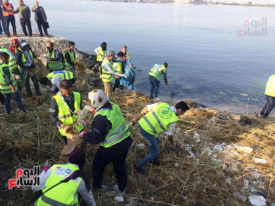 شباب بتحب مصر ينظفون شاطئ بحيرة التمساح بالإسماعيلية (6)