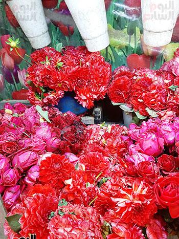 أقدم بائع ورود فى عيد الحب بالشرقية (7)