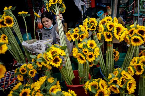 الزهور احتفالا بعيد الحب