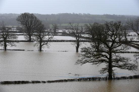 الحقول التى غمرتها المياه