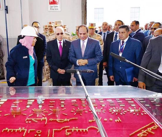 الرئيس عبد الفتاح السيسى (10)