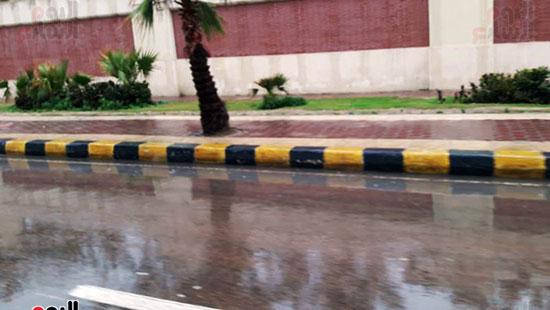 أمطار خفيفة وانخفاض درجات الحرارة فى الإسكندرية (13)