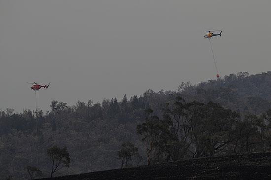 المروحيات تقوم بالغطفاء