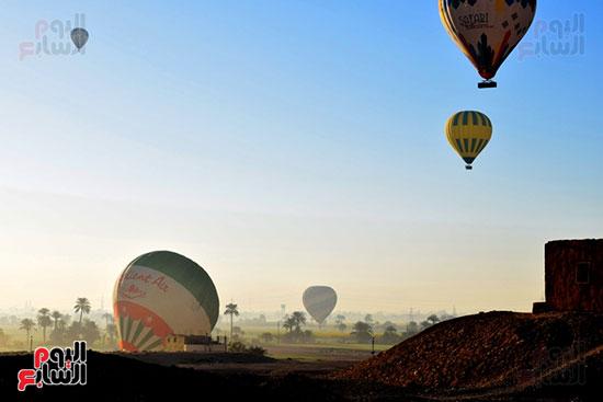 تحليق-10-رحلات-بالون-علي-متنها-210-سائح-من-حول-العالم-في-سماء-مدينة-الأقصر-(3)
