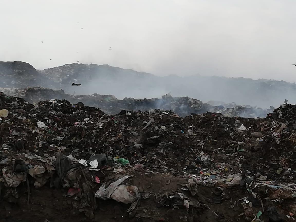 رفع أطنان القمامة بجوار مقلب ديرب نجم بالشرقية  (6)