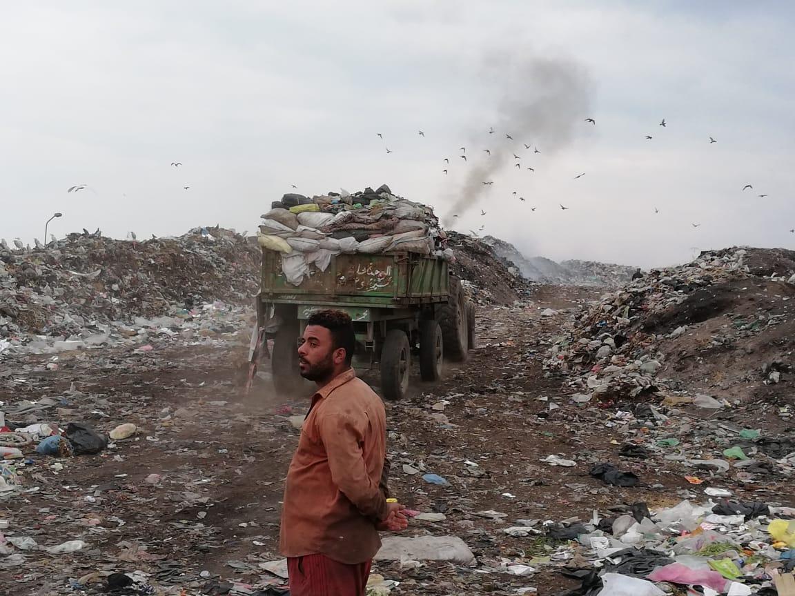 رفع أطنان القمامة بجوار مقلب ديرب نجم بالشرقية  (10)