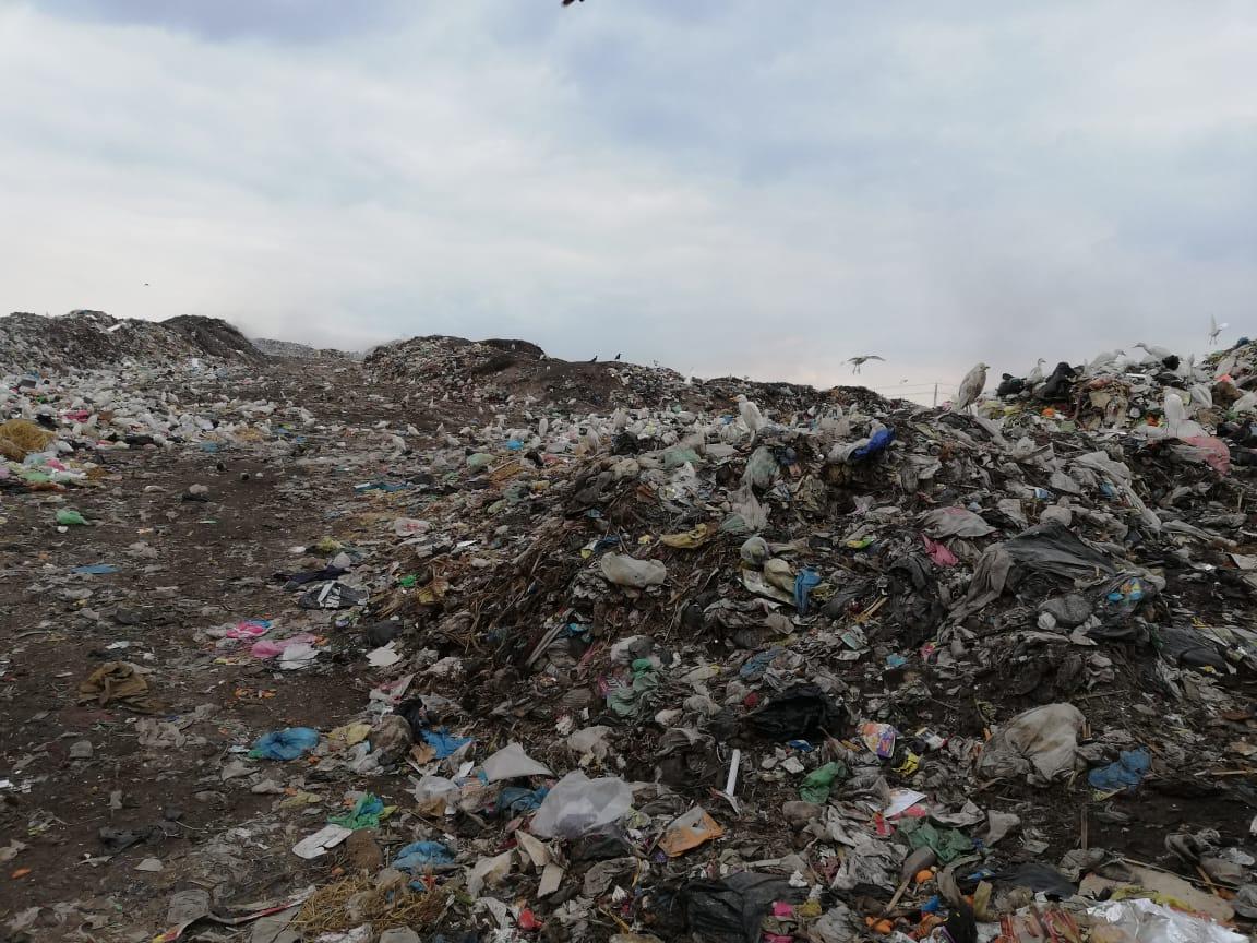 رفع أطنان القمامة بجوار مقلب ديرب نجم بالشرقية  (11)
