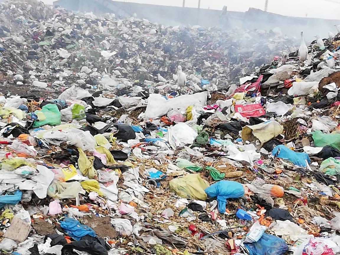 رفع أطنان القمامة بجوار مقلب ديرب نجم بالشرقية  (9)