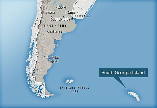 اكتشاف حوت أزرق قرب القارة القطبية الجنوبية