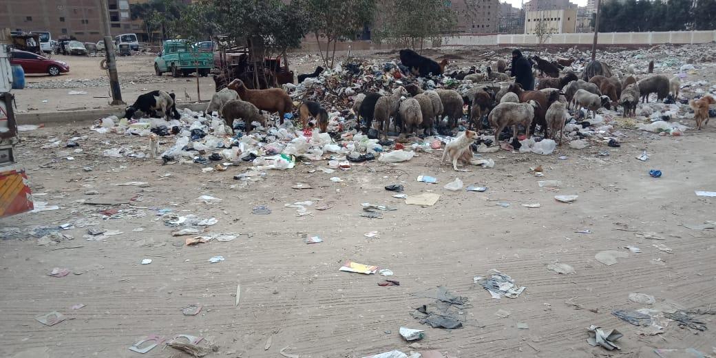 القمامة (1)