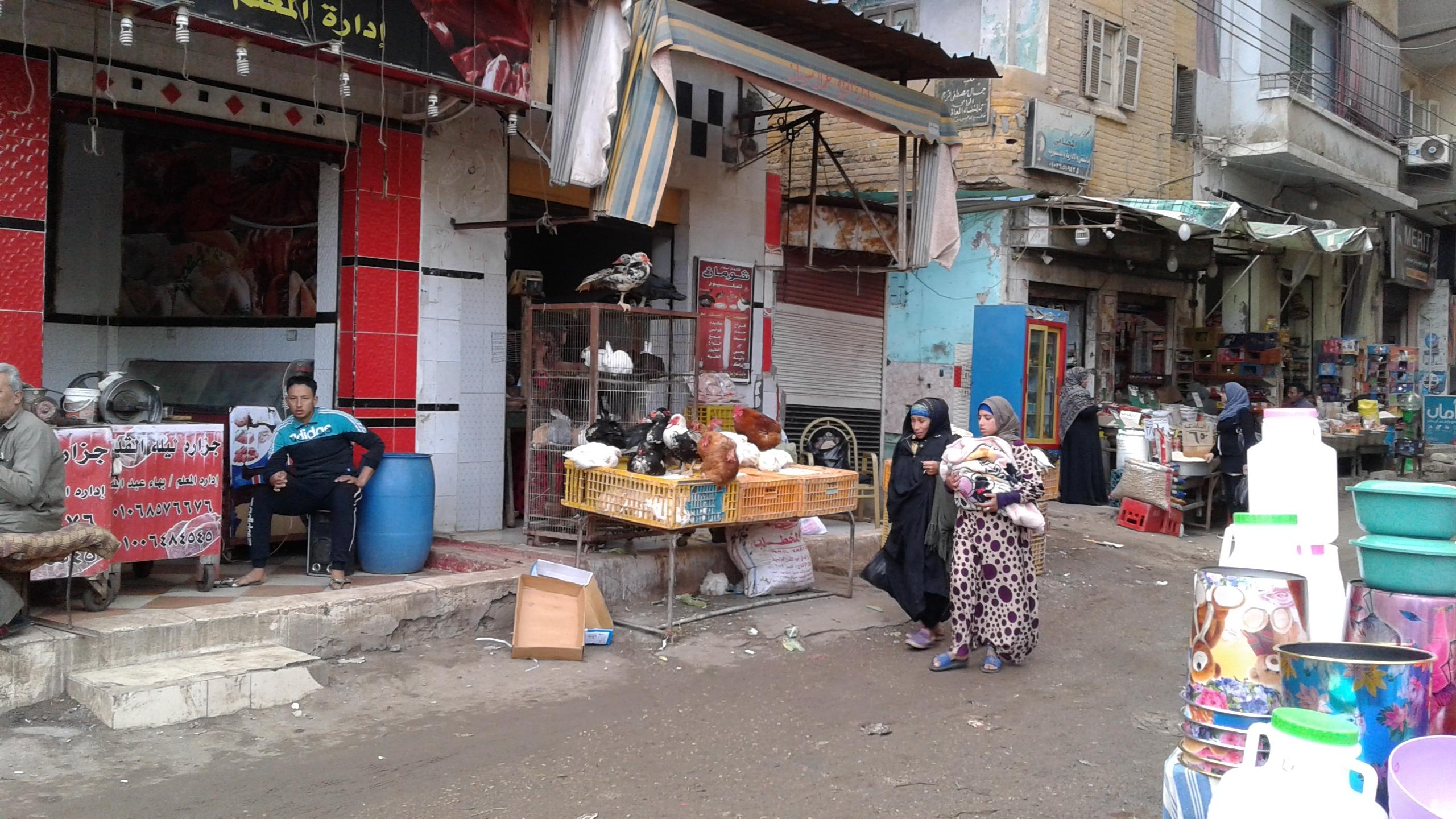 ذبح الطيور خارج المجازر ووسط الشوارع (6)