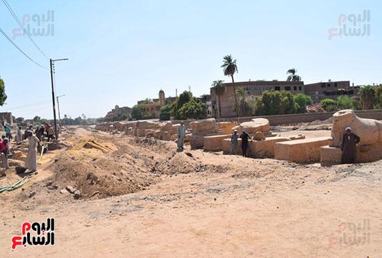 إحياء-طريق-الكباش-الفرعونى-العالمى-يحصل-على-4-خطوات-مميزة-(9)