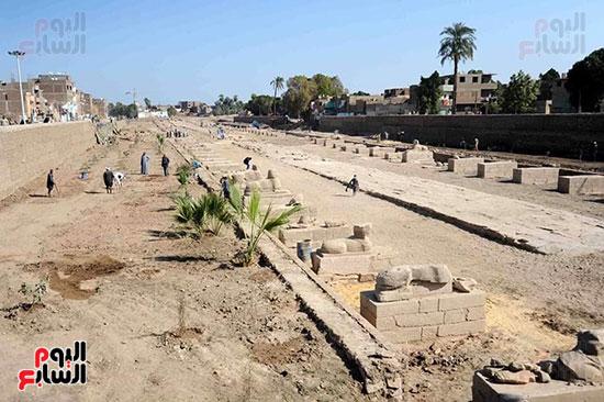 إحياء-طريق-الكباش-الفرعونى-العالمى-يحصل-على-4-خطوات-مميزة-(4)