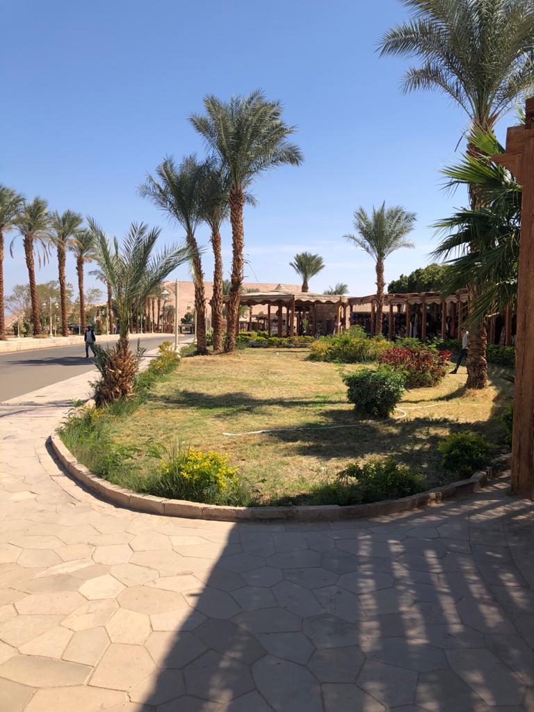 تطوير معبدي أبو سمبل بأسوان (1)