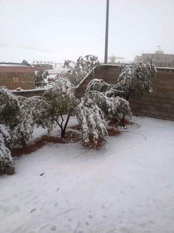 الثلوج-تغطي-مدينة-سانت-كاترين-(1)