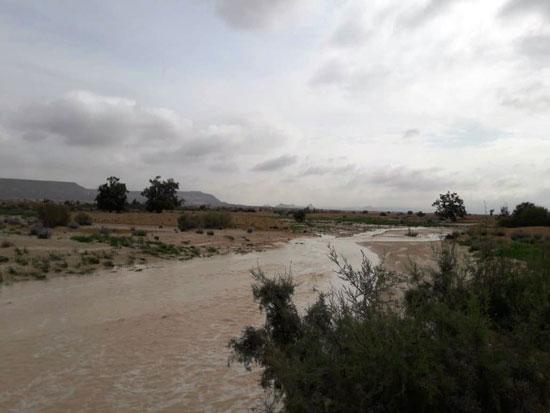 سيول-بمنطقة-شمال-سيناء
