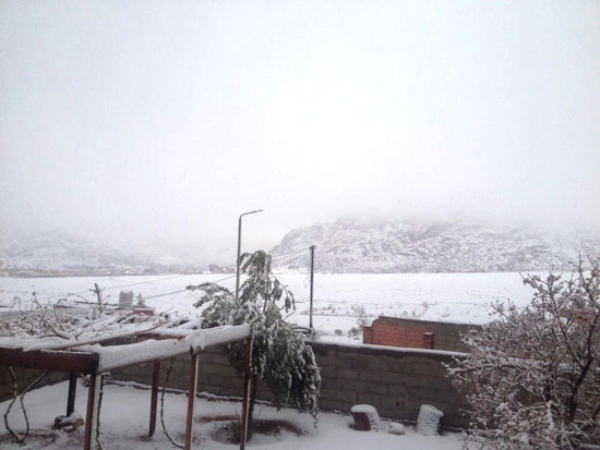 مشهد-الثلوج-يغطى-جبل-سانت-كاترين