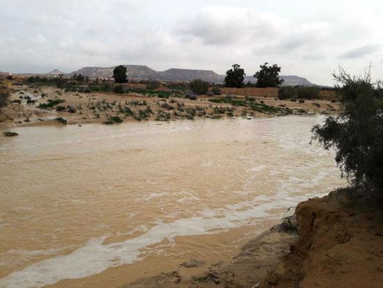 جانب-من-الامطار-بشمال-سيناء