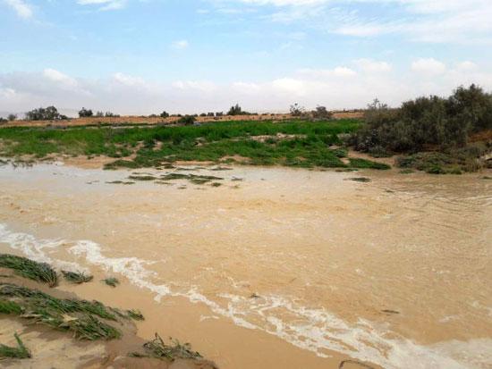 شمال-سيناء