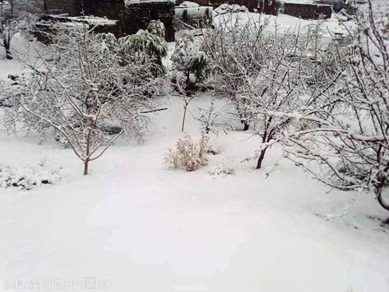 الثلوج تغطى مدينة سانت كاترين (5)
