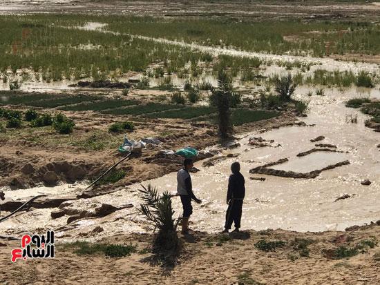 السيول تبلل عطش رمال أرض الفيروز (6)