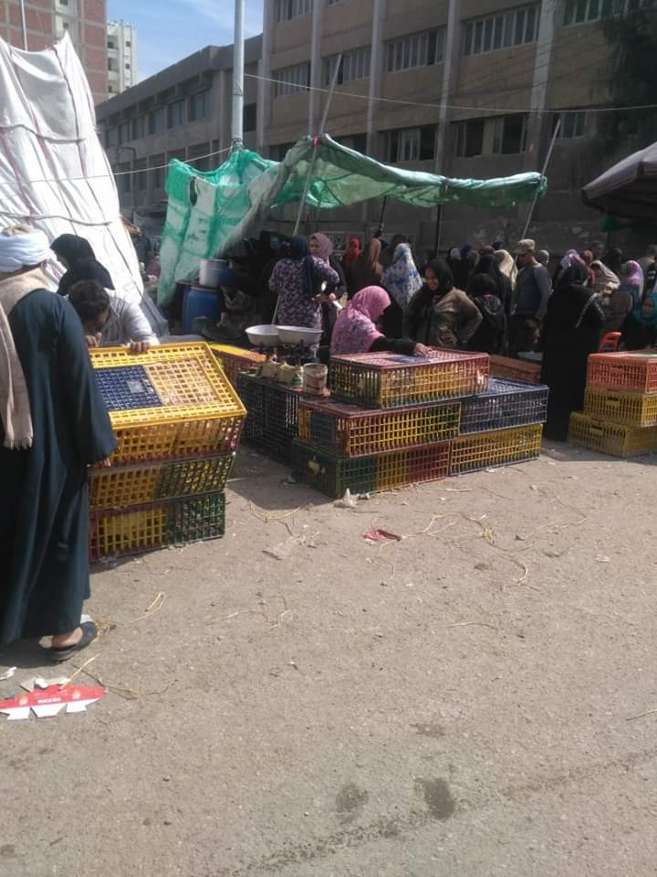 ذبح الطيور الحية لسوق الخميس ببلبيس (2)