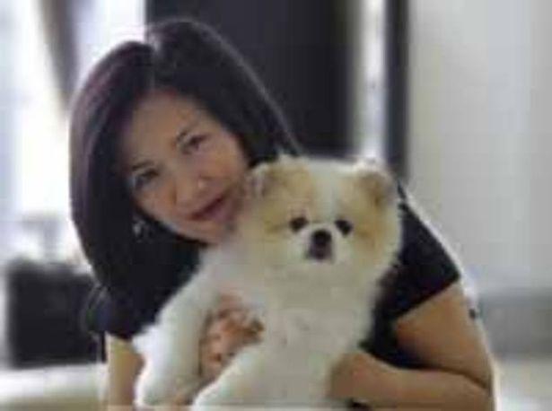 الكلب المصاب بكورونا