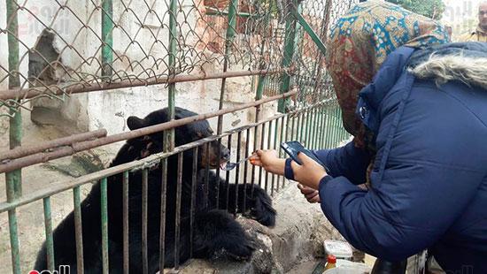حديقة حيوان الإسكندرية (4)