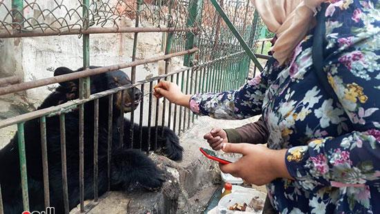 حديقة حيوان الإسكندرية (3)