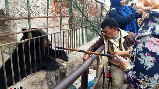 حديقة حيوان الإسكندرية (7)