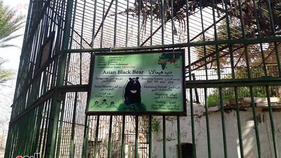 حديقة حيوان الإسكندرية (13)