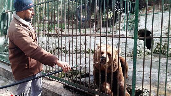 حديقة حيوان الإسكندرية (12)