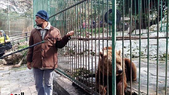 حديقة حيوان الإسكندرية (8)