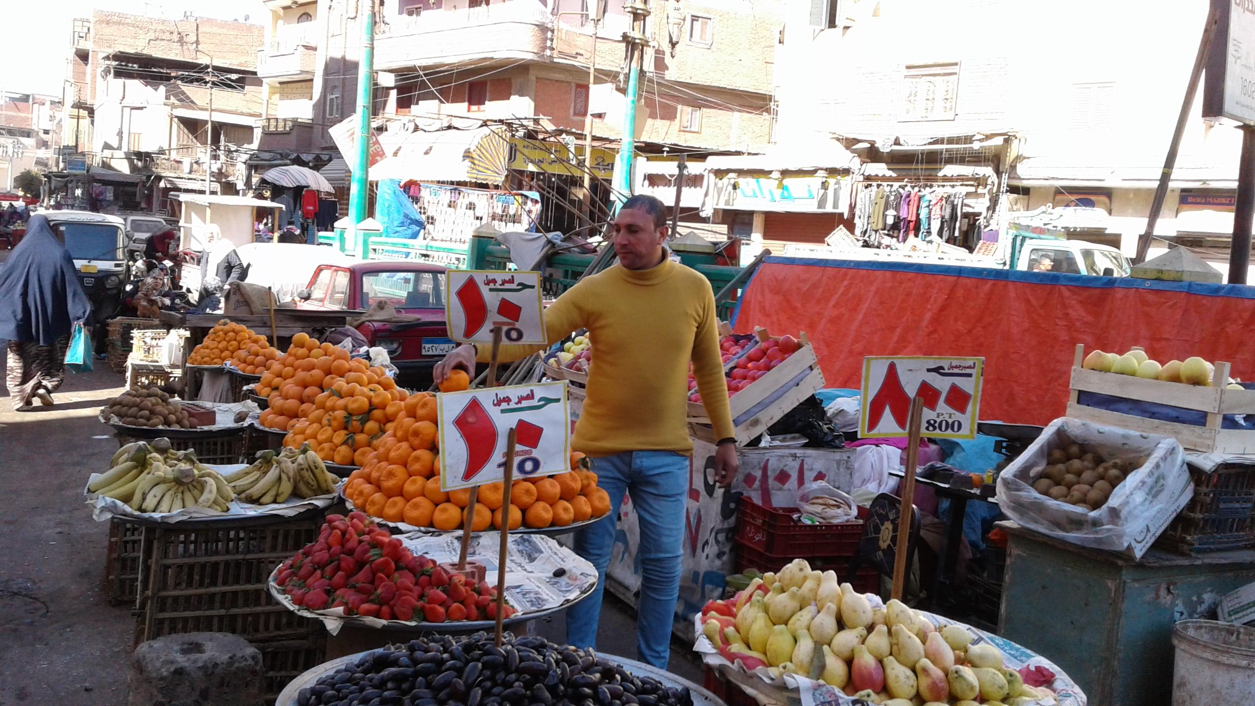 أسواق الخضر والفاكهة بمحافظة المنوفية (4)