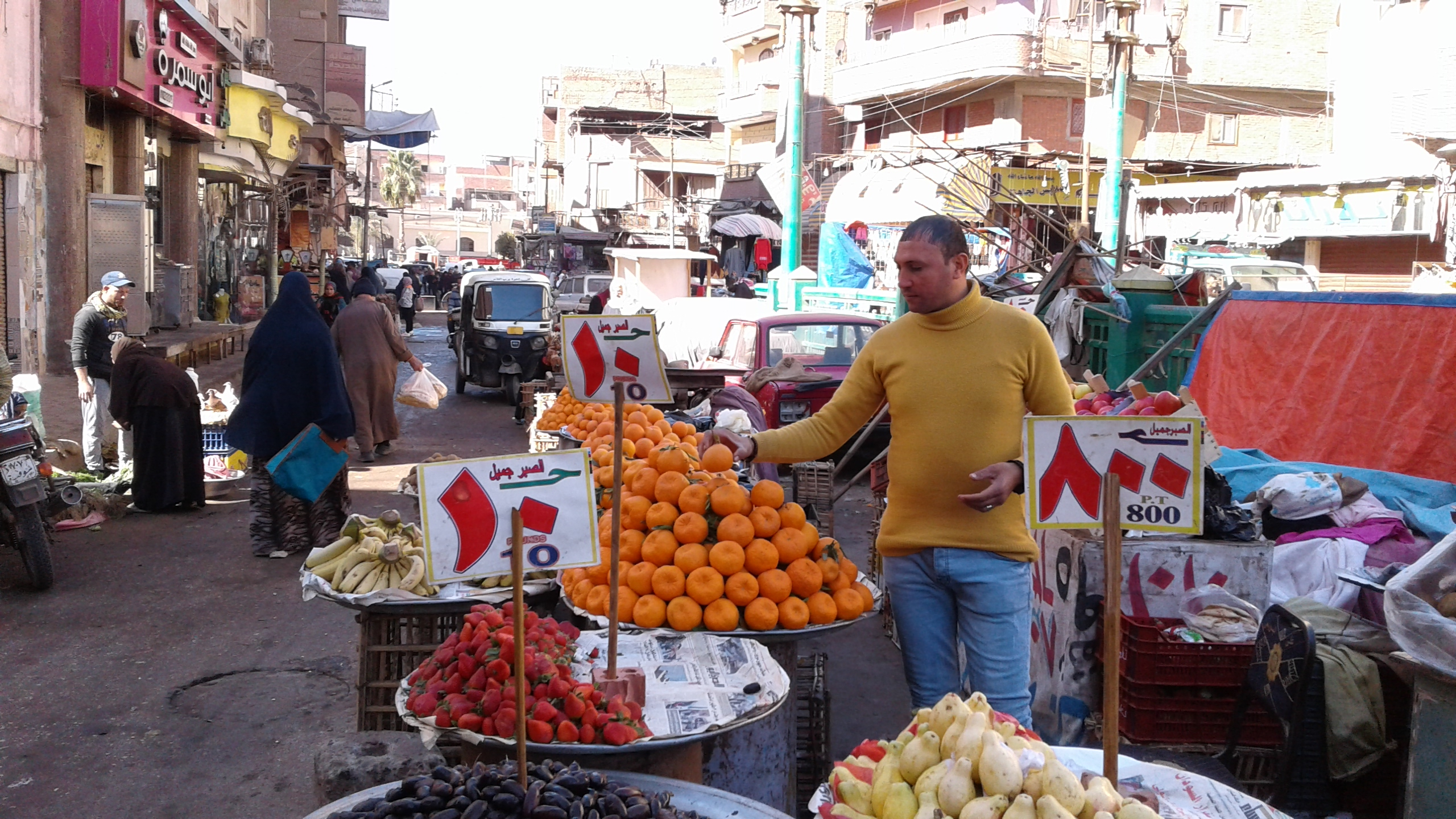 أسواق الخضر والفاكهة بمحافظة المنوفية (3)