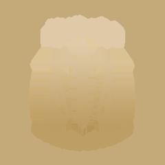 مجلس الدولة 2