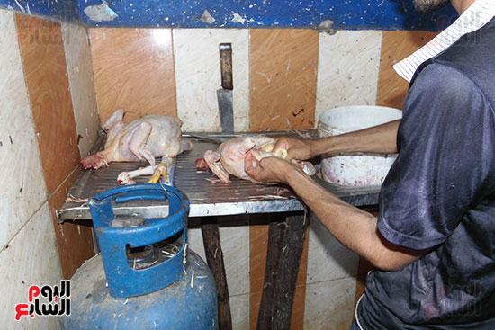 استمرار ذبح الطيور الحية بالمحافظات بالمخالفة للقانون (9)