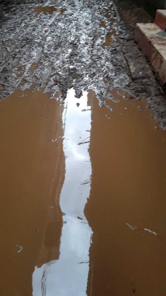مياه الأمطار تحاصر قرية شطانوف بالمنوفية (4)