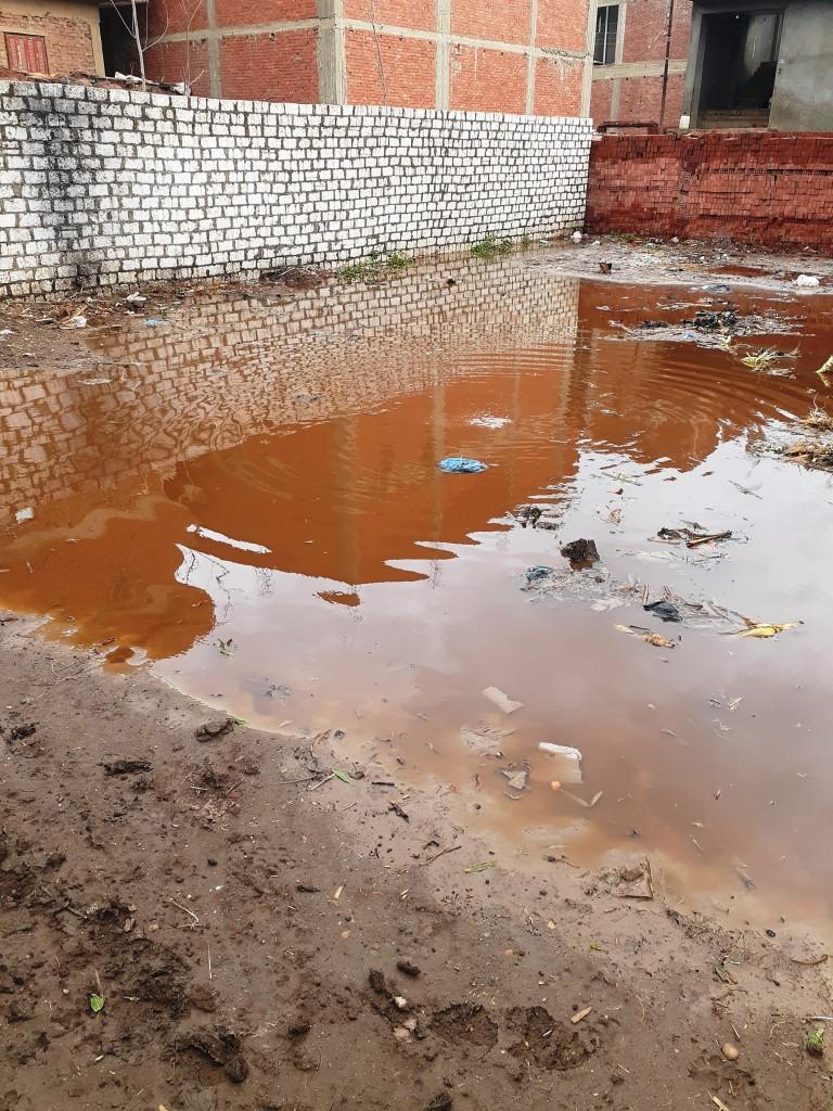 مياه الأمطار تحاصر قرية شطانوف بالمنوفية (6)