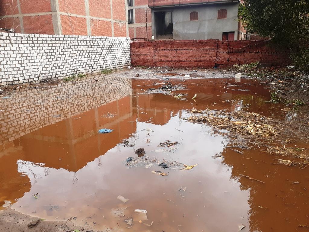 مياه الأمطار تحاصر قرية شطانوف بالمنوفية (8)