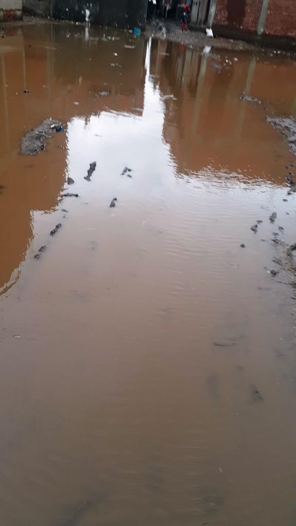 مياه الأمطار تحاصر قرية شطانوف بالمنوفية (13)