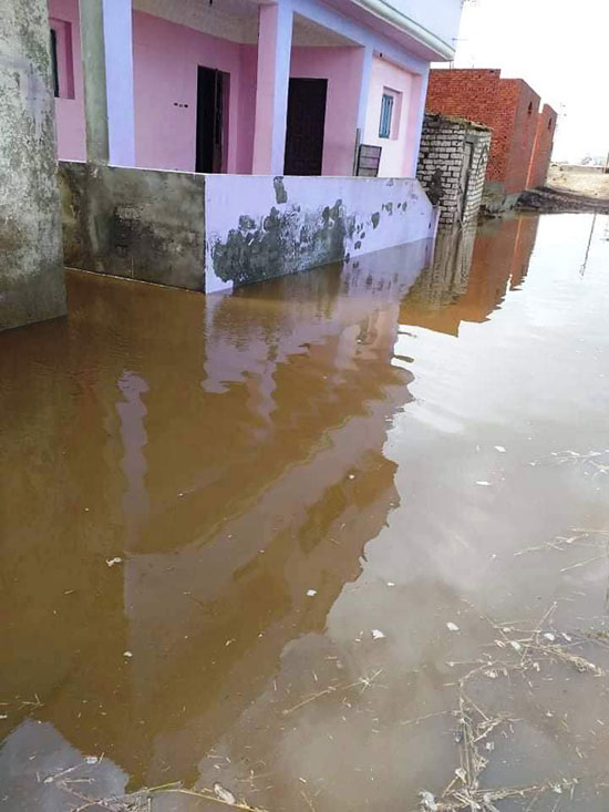 غرق الأرضي الزراعية وعشرات المنازل بقرية بحر البقر (10)