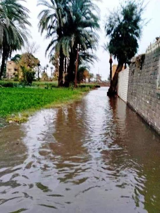 غرق الأرضي الزراعية وعشرات المنازل بقرية بحر البقر (14)