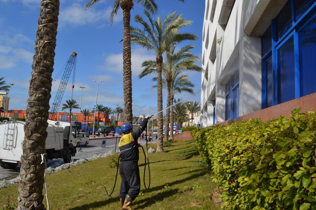تعقيم فى ميناء الإسكندرية لمواجهة كورونا (1)
