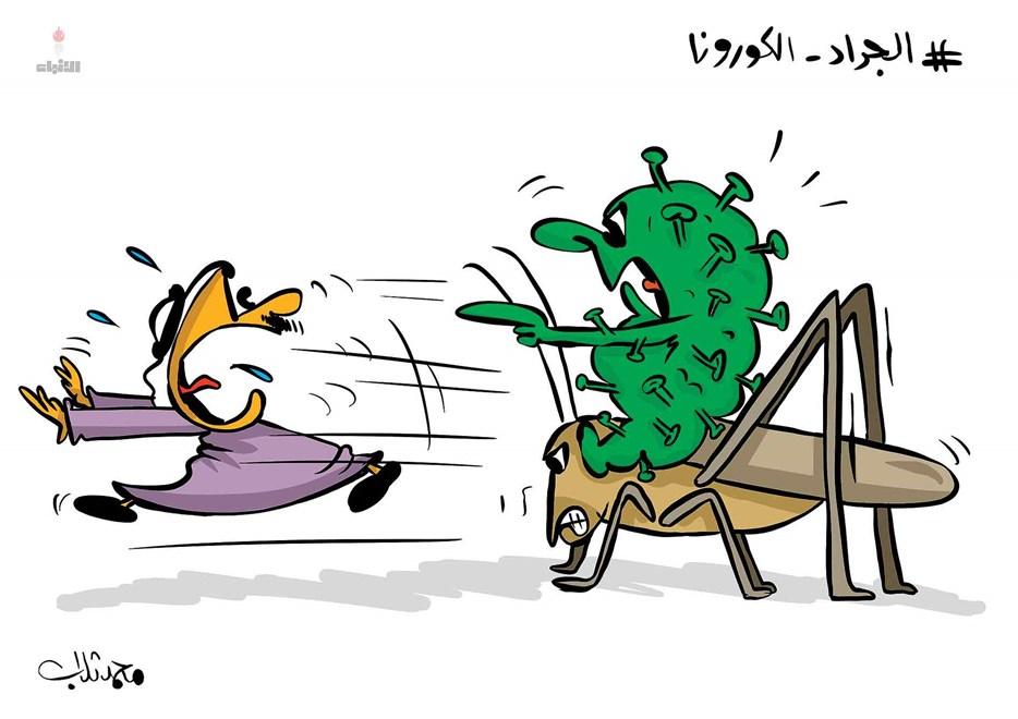 كورونا يستغل الجراد فى التنقل بالكويت