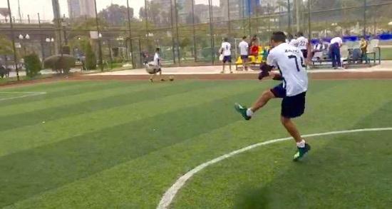 حسن زيزو يلعب كرة القدم