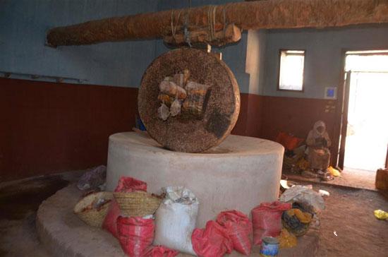 إكتشاف-أصول-إسنا-التراثية-مشروع-قومى-لحماية-التراث--(19)